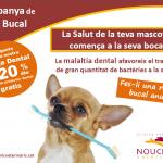 Campanya de salut bucal 2020