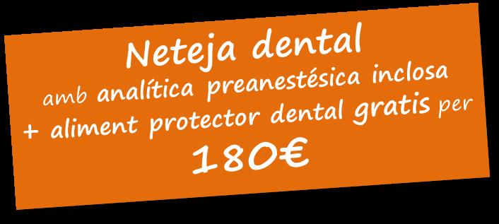 Promoció Neteja Dental